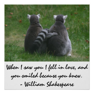 When I saw you I fell in love - Lemur love Poster