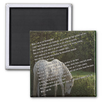When I'm an Old Horsewoman III 2 Inch Square Magnet