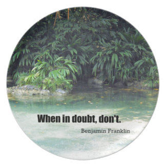When in doubt, don't. melamine plate