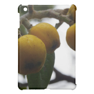 When Life Gives You Lemons... Case For The iPad Mini