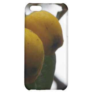 When Life Gives You Lemons... iPhone 5C Cases