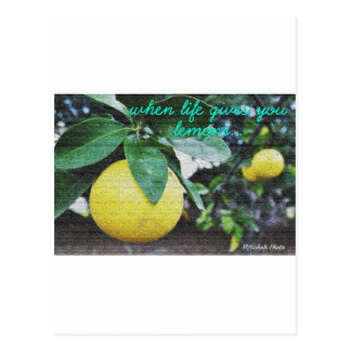 When Life Gives You Lemons Postcard