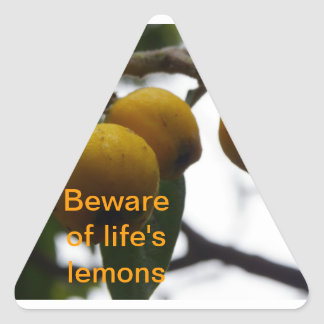 When Life Gives You Lemons... Triangle Sticker