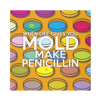 WHEN LIFE GIVES YOU MOLD MAKE PENICILLIN METAL PRINT