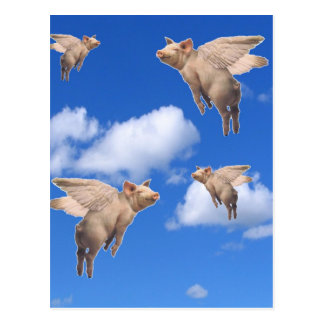 When Pigs Fly Postcard