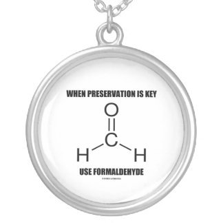 When Preservation Is Key Use Formaldehyde Silver Plated Necklace