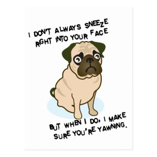 When pugs are sneezing postcard