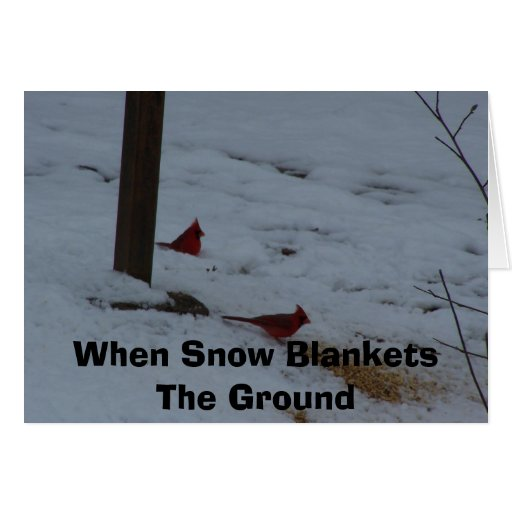 When Snow Blankets The Ground Greeting Card