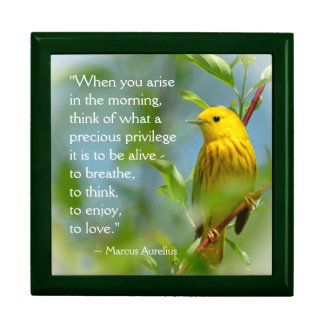 When You Arise ... Yellow Warbler Inspiring Quote Trinket Boxes