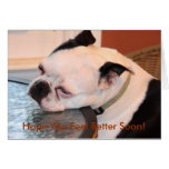 When You're Feeling Blue Boston Terrier Greeting Cards