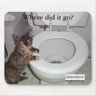 """""""Where did it go?"""" Mousepad"""