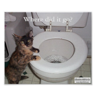 """""""Where did it go?"""" Poster"""