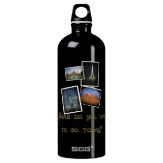 Where Do You Want to Go? SIGG Traveler 1.0L Water Bottle