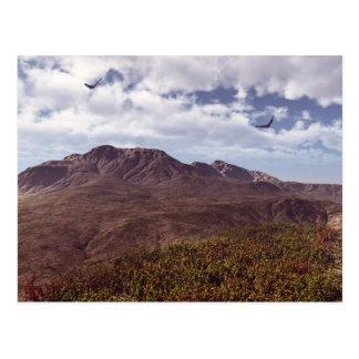Where Eagles Fly Postcard