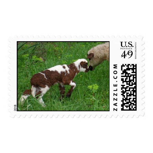 Where Ewe Been? Postage Stamps