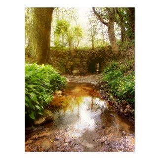 Where fairies play postcard