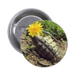 Where Have All The Flowers Gone? Pinback Buttons