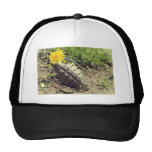 Where Have All The Flowers Gone? Trucker Hats