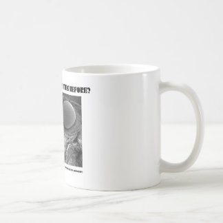 Where Have I Seen This Before? Pyralid Moth Coffee Mugs