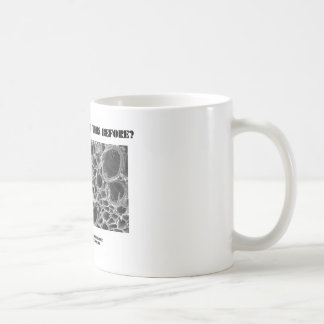 Where Have I Seen This Before? Vascular Bundle Mugs