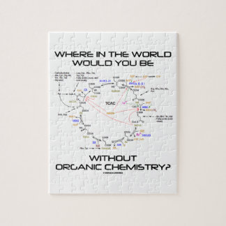 Where In The World Would You Be Organic Chemistry? Jigsaw Puzzle