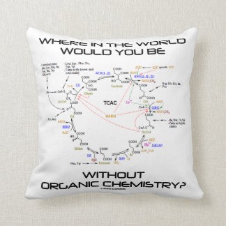 Where In The World Would You Be Organic Chemistry? Throw Pillow