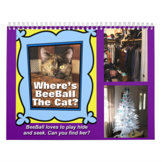 Where is BeeBall the Cat Calendar