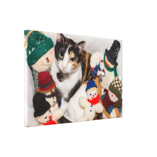 Where Is The Cat Canvas Print
