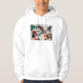 Where Is The Cat Hoodie