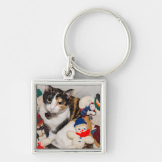 Where Is The Cat Keychain