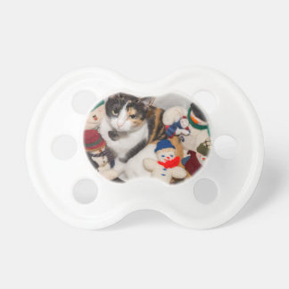 Where Is The Cat Pacifier