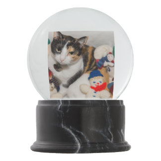 Where Is The Cat Snow Globe