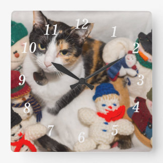 Where Is The Cat Square Wall Clock