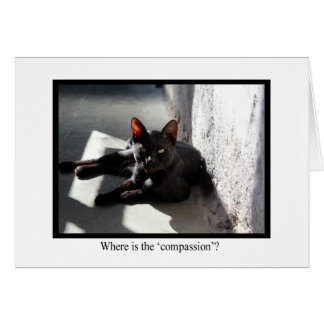 Where Is The Compassion? Animal Notecards Card