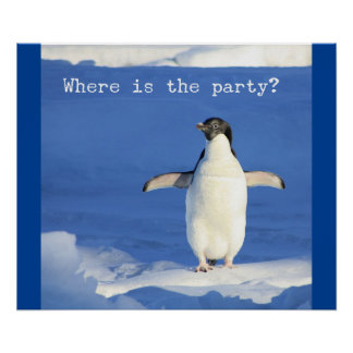 Where is the party? - funny penguin poster
