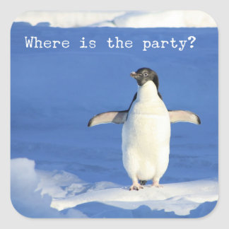 Where is the party? - funny penguin sticker