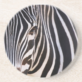 Where Is The Zebra Drinks Coaster? Drink Coaster