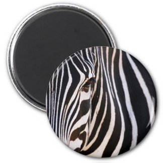 Where Is The Zebra? 2 Inch Round Magnet