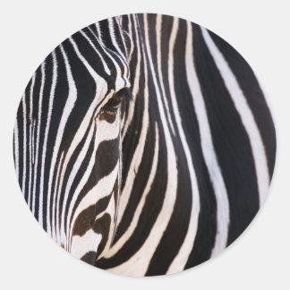 Where Is The Zebra? Classic Round Sticker
