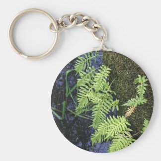 Where The Green Fern Grows Keychain