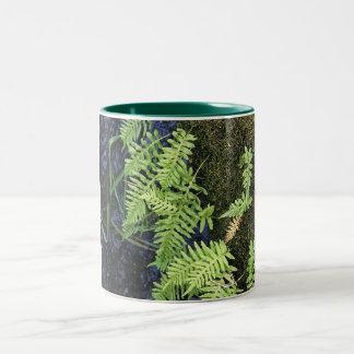 Where The Green Fern Grows Two-Tone Coffee Mug