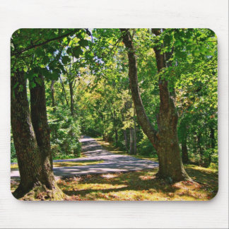 Where The Road Leads Mouse Pad