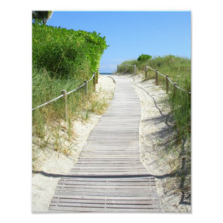 Where will the path take you? photo print