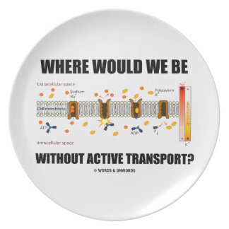 Where Would We Be Without Active Transport? Dinner Plate