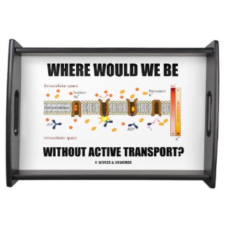 Where Would We Be Without Active Transport? Serving Tray