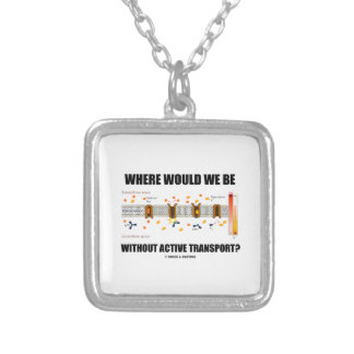 Where Would We Be Without Active Transport? Silver Plated Necklace