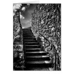 Where Your Steps Lead blank Stationery Note Card