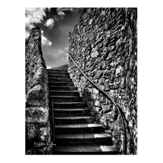 Where Your Steps Lead postcard