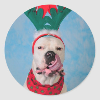 Where's my egg nog? classic round sticker