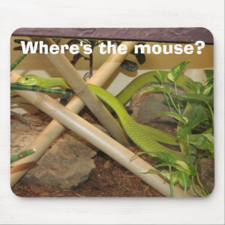 Where's the mouse? mouse pad